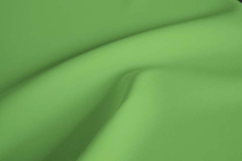 Spring Green: Bright Green