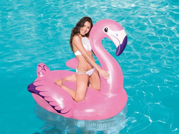 flamingo water ring